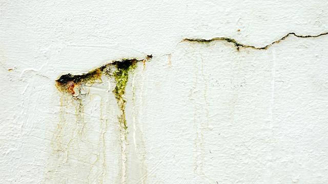 壁の内部が腐る